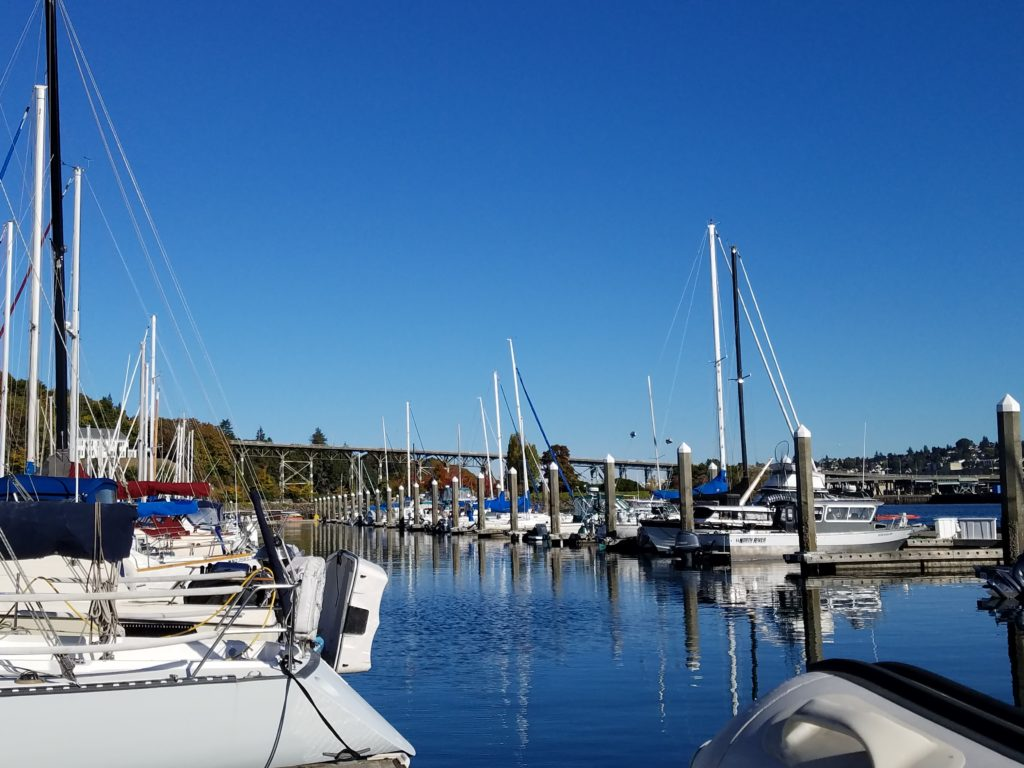 Fall at Seattle marina