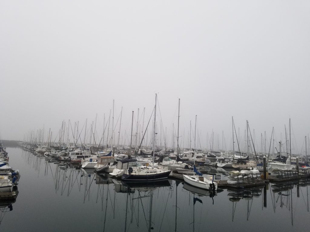 sail boats foggy seattle
