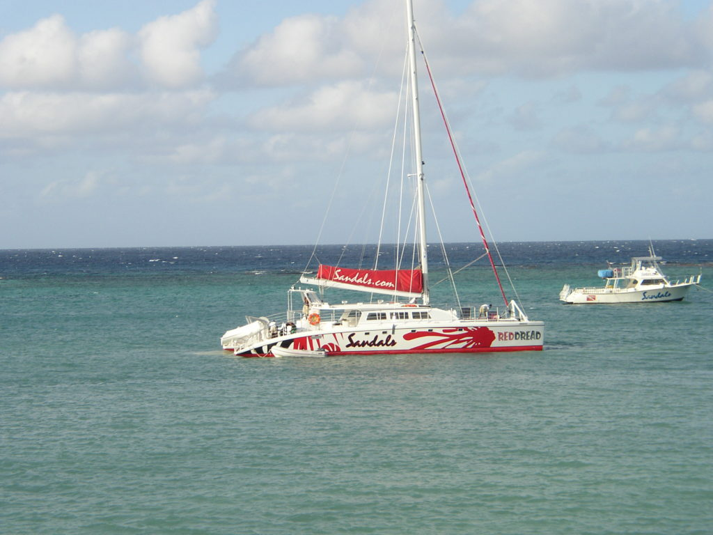 cat sailing jamaica